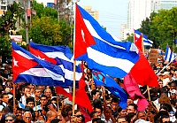 Bild: Wald von Cuba Fahnenn